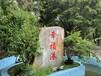 在深圳周邊適合中秋晚宴團建活動的農家樂